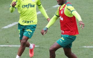 Após empate pela libertadores, Palmeiras inicia a preparação visando o derby