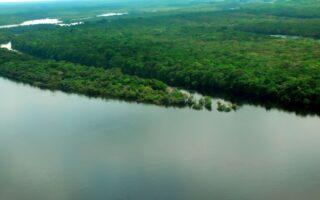 Governo estuda remuneração aos proprietários de terras que preservarem florestas